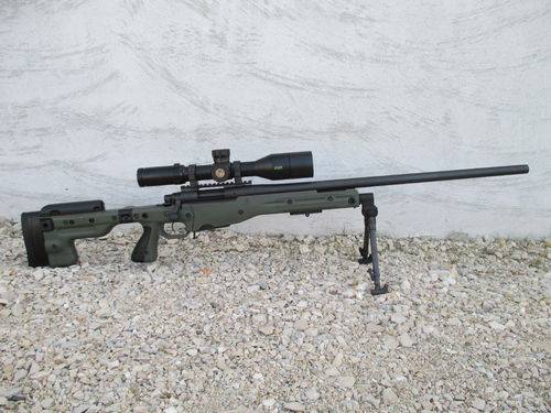 Custom Remington 700 - AICS AT